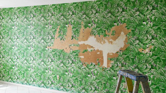 4-Langkah-Mudah-Melepaskan-Wallpaper-Dinding-Usang