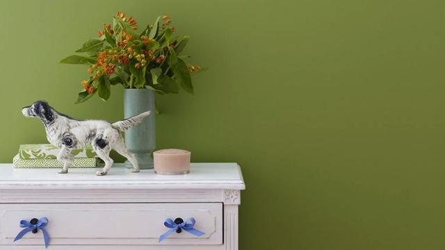 Mengintip-Bagaimana-Warna-Ruangan-Dapat-Mempengaruhi-Suasana-Hati-hijau2