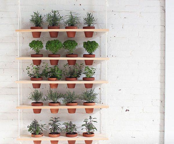 Langkah Pembuatan Vertical Garden