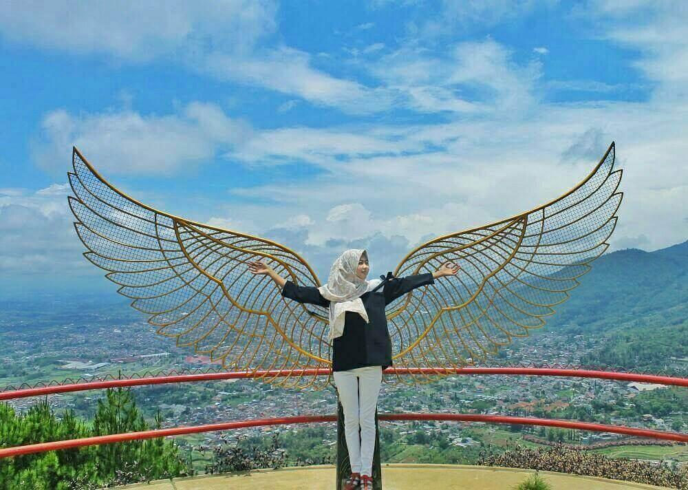 Gambar Sayap Bidadari Paralayang